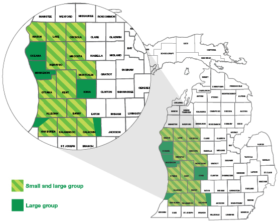 Map of Michigan with West Michigan Partners callout