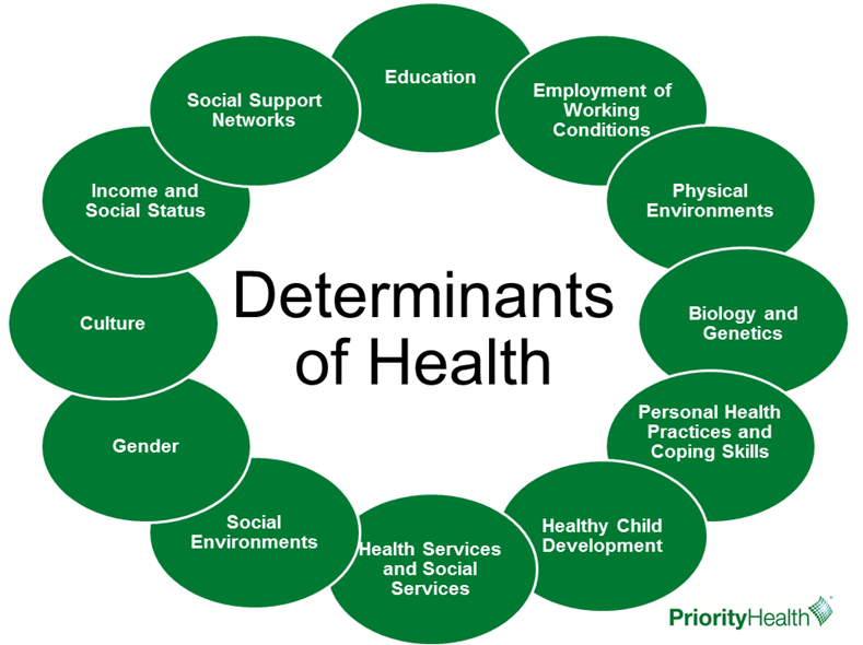 determinants of health circle