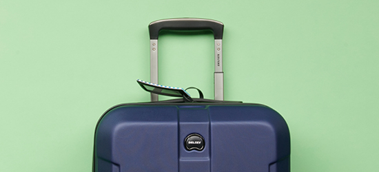 blue suitcase against a green background
