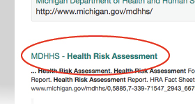text showing MDHHS Health Risk Assessment